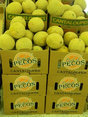 Cantaloupes, Pride of Pecos