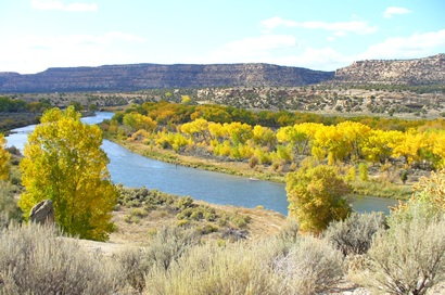 Fly fishing in new mexico 39 s san juan river for Fly fishing new mexico
