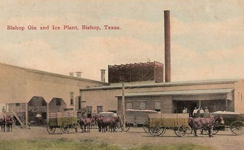 Bishop Gin and Ice Plant, Bishop Texas