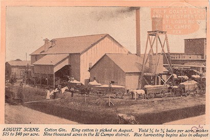 El Campo Texas cotton gin advertising postcard 1910