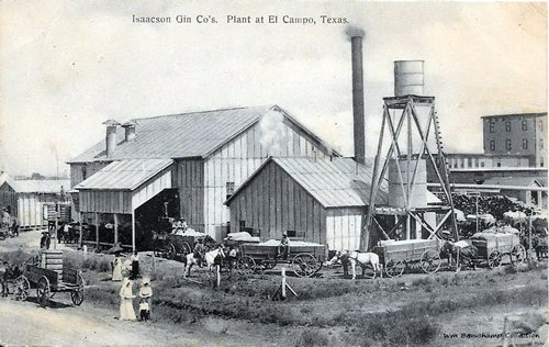 Isaacson Gin Co's. Plant at El Campo, TX