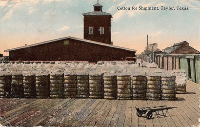 Cotton for shipment, Taylor Texas