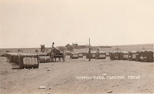 Cotton Yard, Carlton, Texas