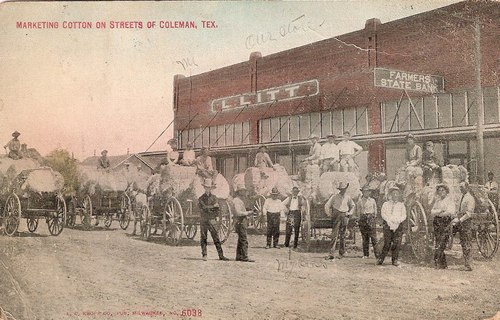 Marketing Cotton on Streets of Coleman, Texas
