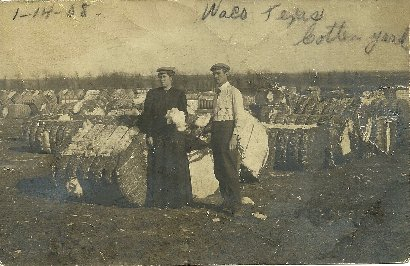 Waco, TX - Cotton Yard dated 1908