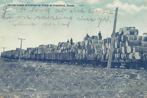 Crawford, Texas - Car Loads of Cotton on Track