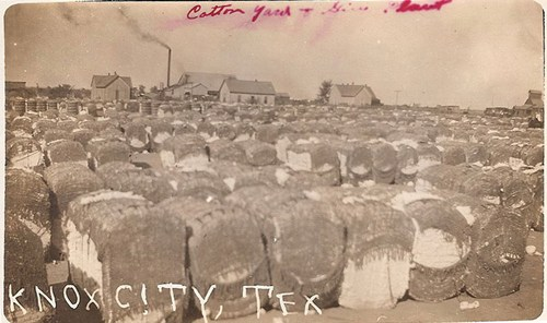 Knox City, Texas cotton yard