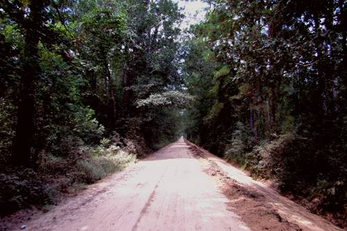 Hardin County ghost road, east Texas
