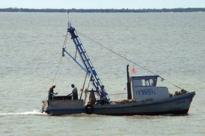 In plain sight for Port lavaca fishing
