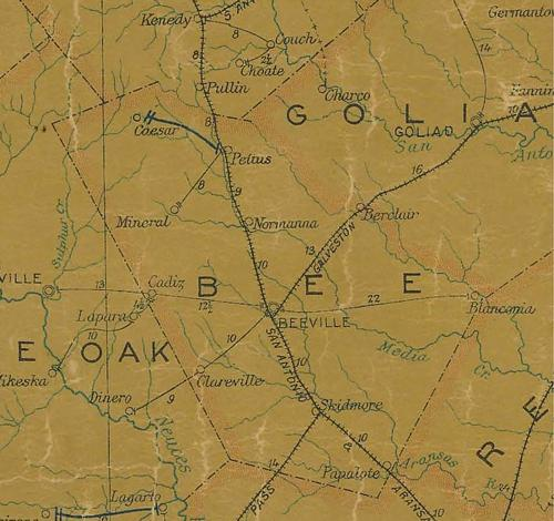 Bee County TX 1907 postal map