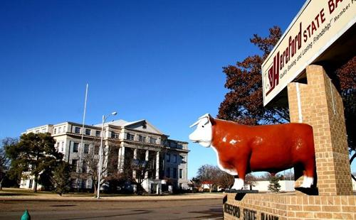 Hereford Cow Sign And Deaf Smith County Courthouse Texas