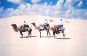 Camel riders in Monahans Sandhill State Park