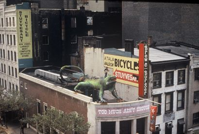 Lone Star Cafe Nyc Iguana