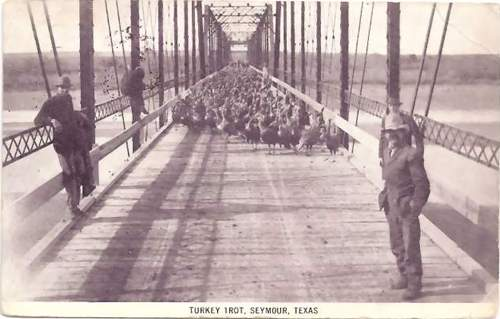 Seymour Texas Baylor County Seat