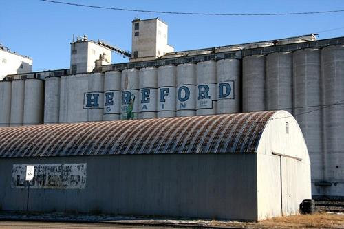Hereford  Grain painted company sign on grain elevators, Hereford , Texas