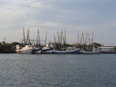 Port isabel texas for Port isabel fishing
