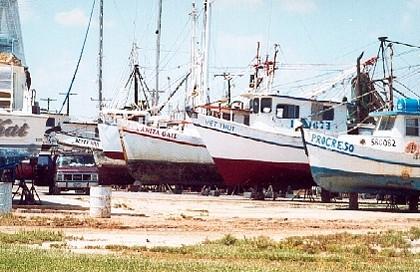 Port Lavaca Tx Shrimp Boats
