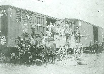 Wharton, Texas - cottonseed train and mule wagons